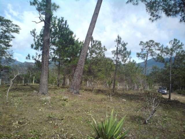 La palma - chalatenango - vendo hermoso lote
