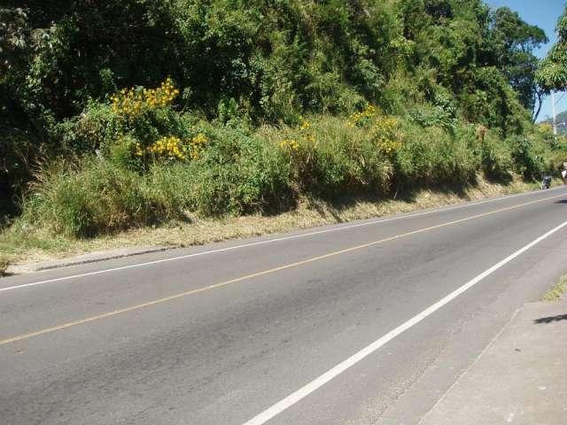 Se vende lotes carretera antigua san marcos- santo tomas
