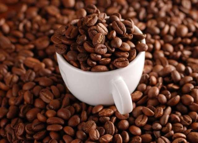 Venta de semilla de cacao de buena calidad