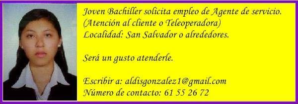 Servicio al cliente o tele-operadora.