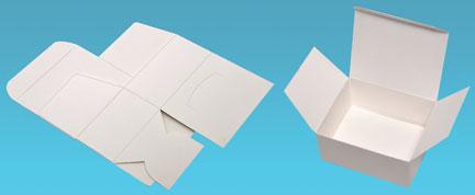 Se busca diseñador grafico estructural - elaborador de mecanicos-dommies en blanco