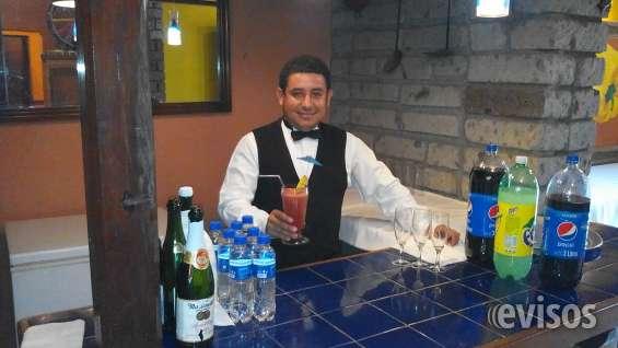 Meseros y bartender a domicilio