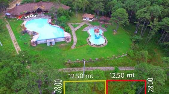 2 lotes de 500 v2 enmedio de paisajes de pinos, frente a las piscinas, con agua, luz, calle empedrada y debidamente inscritos